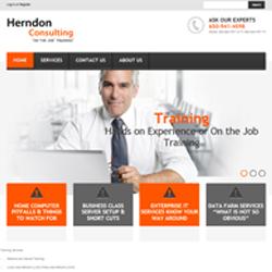 Herndon Consulting Portfolio image